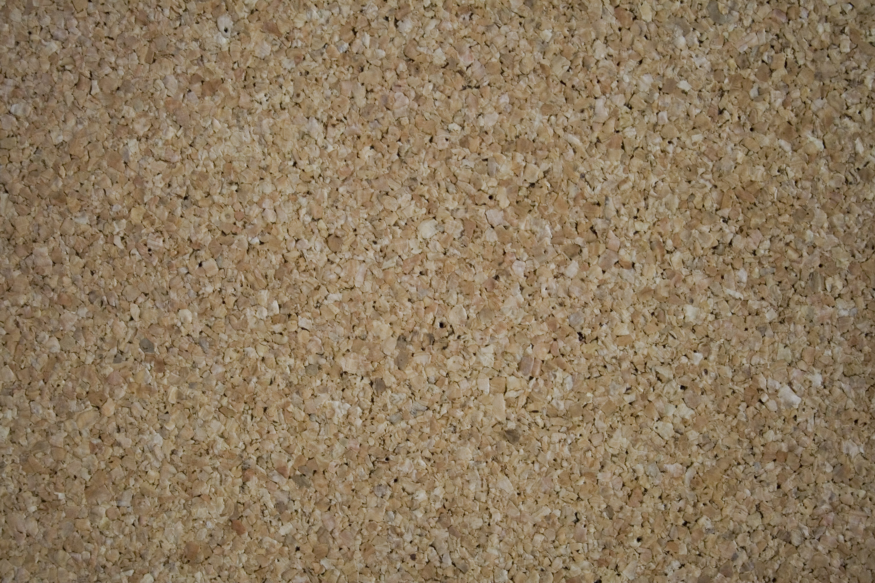 Corkwood texture - free download | Textures for photoshop free
