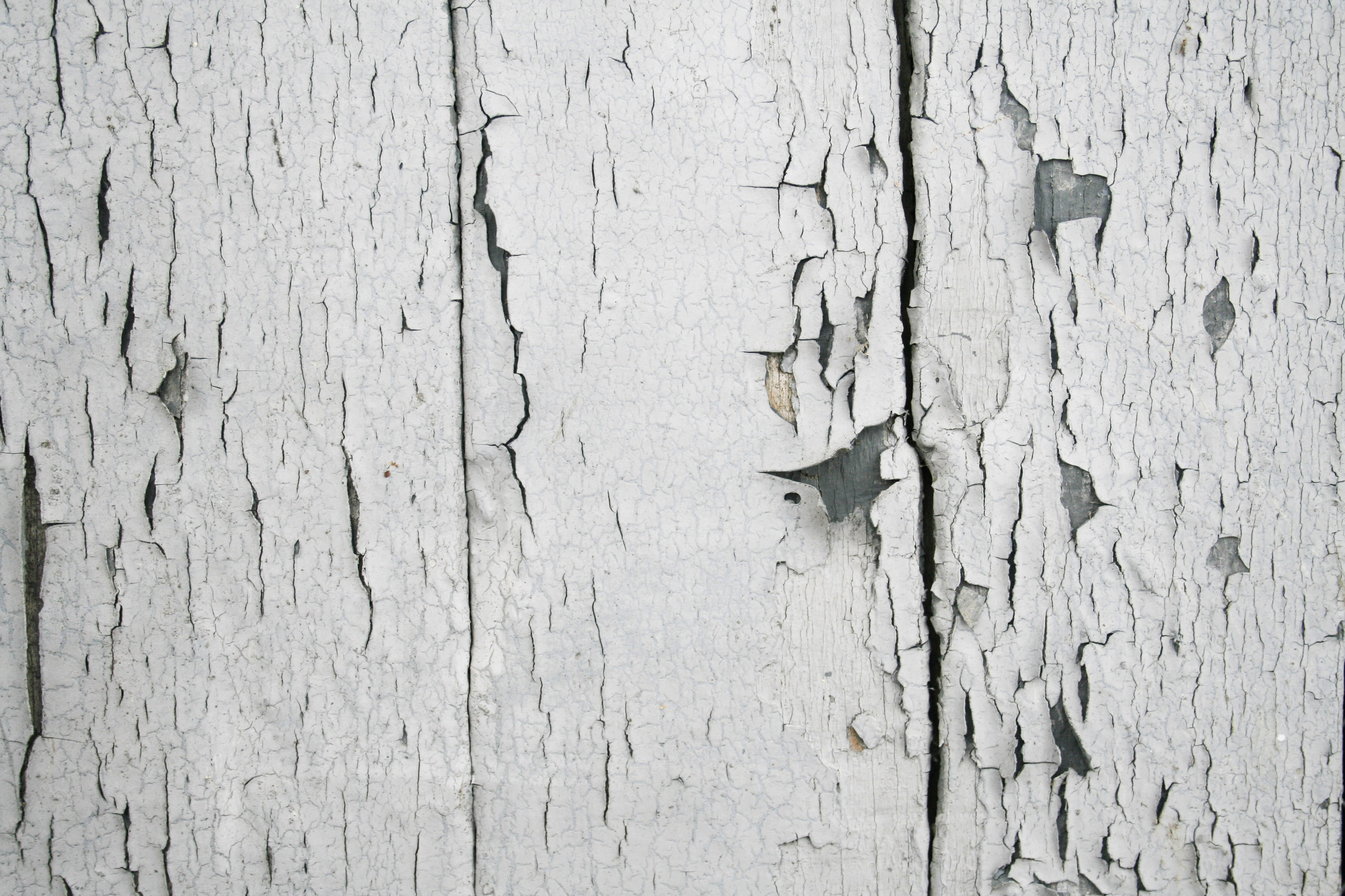 Free For Work Texture White Y Old Planks