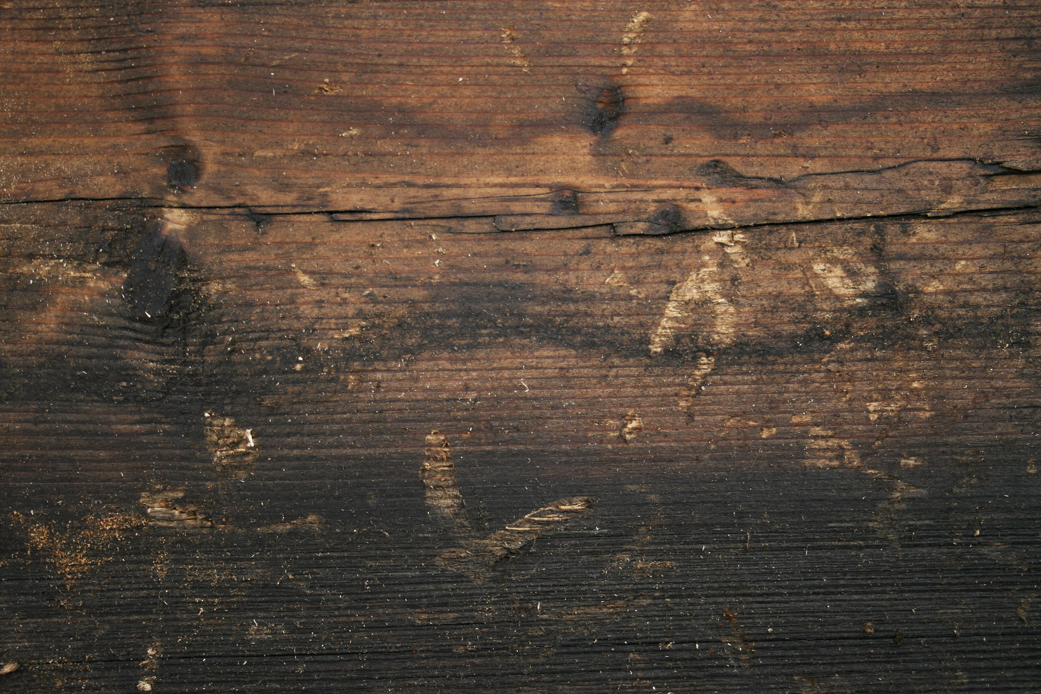 Free Stock Wood Textures Old Wood Cg Textures Free