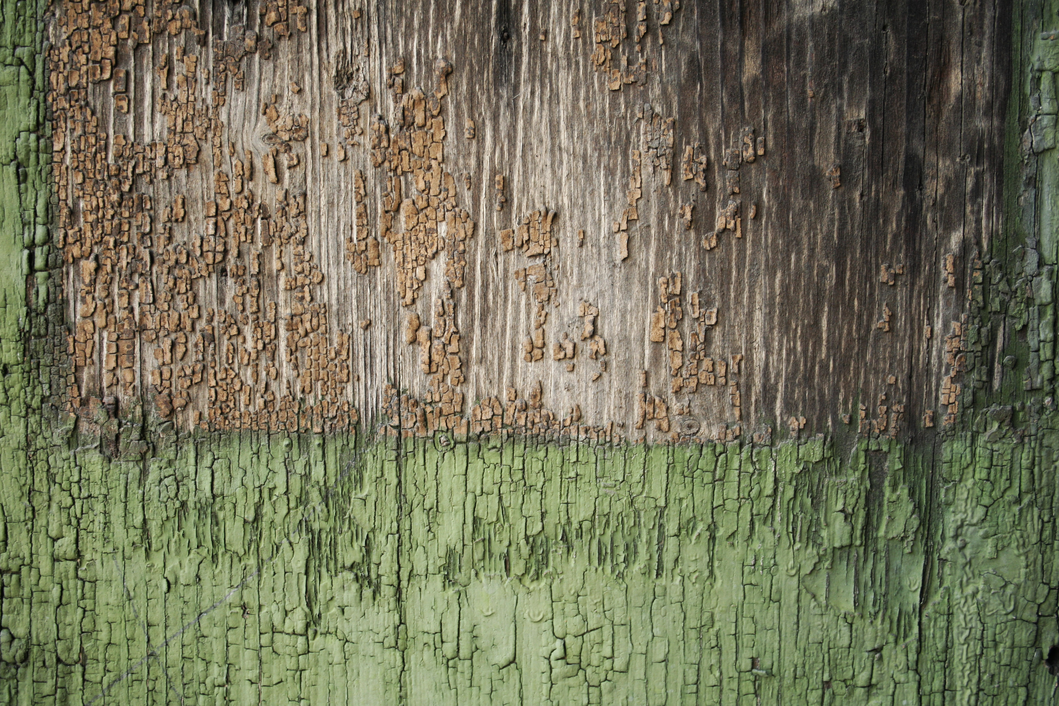 Free Stock Wood Textures Painted Wood Cg Textures Free Download Wood Textures Download