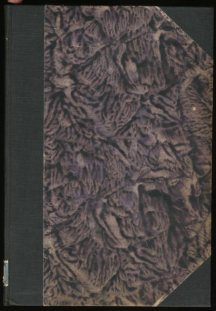 05-vintage-book-cover-texture-texturepalace-medium-150722