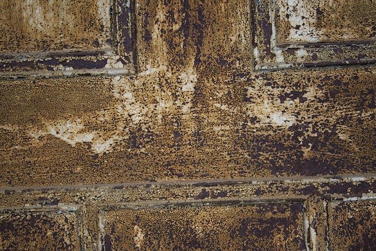 Metal, old rusty door free stock texture
