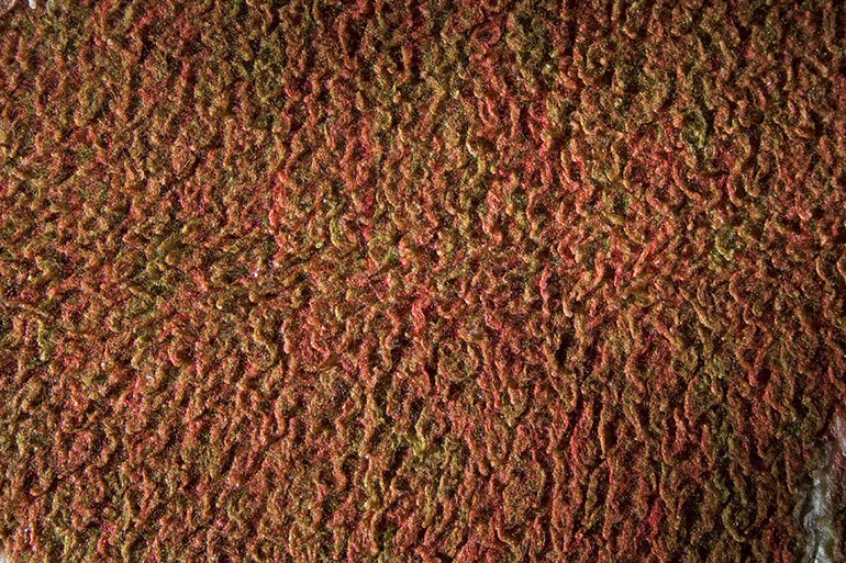 Claret color textile texture closeup