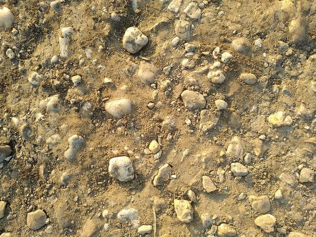 14 Brown Ground Texture