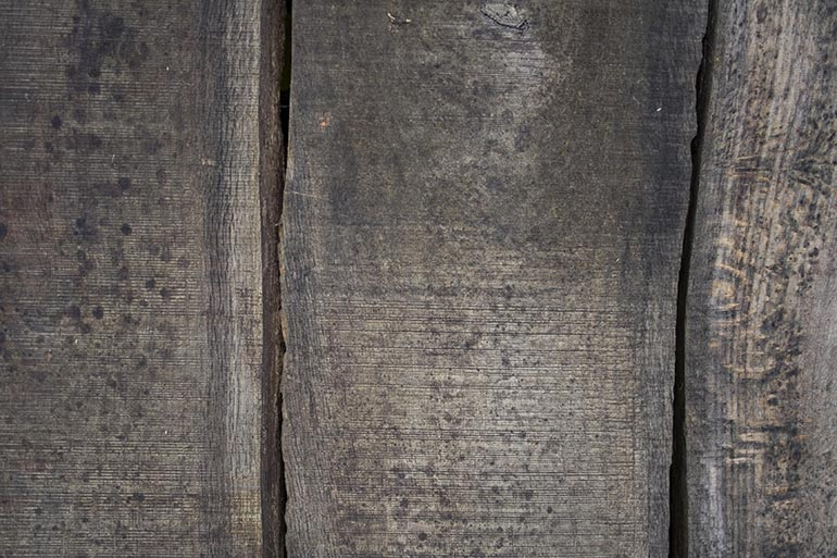 Planks old, premium and free stock texture