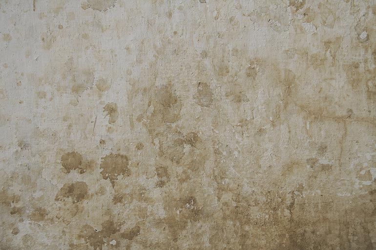 Wall, Free Texture for photoshop design