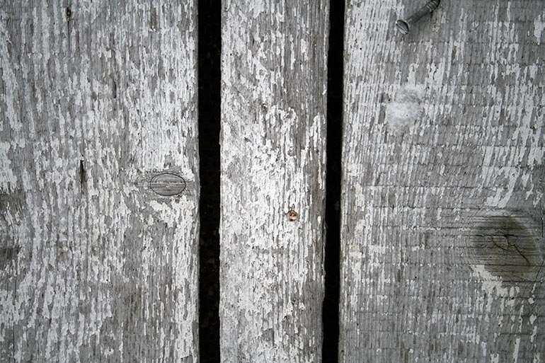 White and grey color painted planks old texture