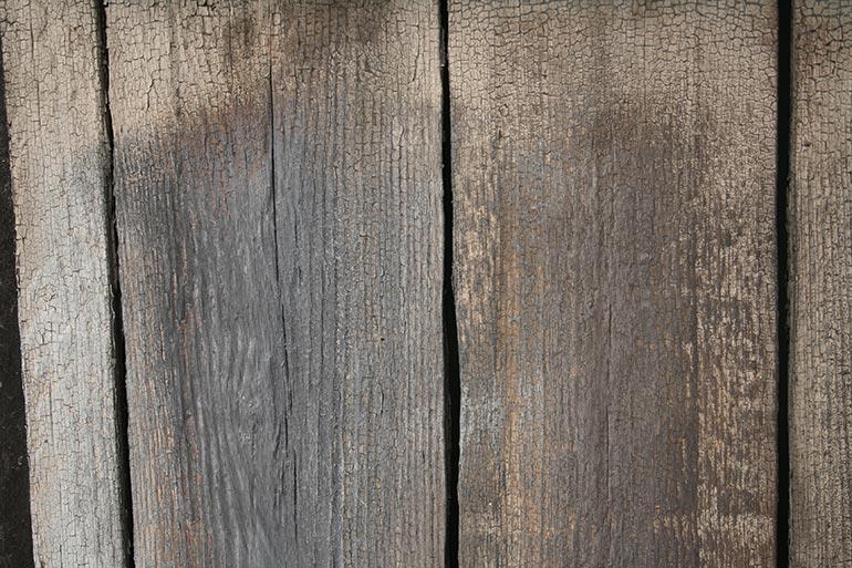 Wood Planks Premium Texture