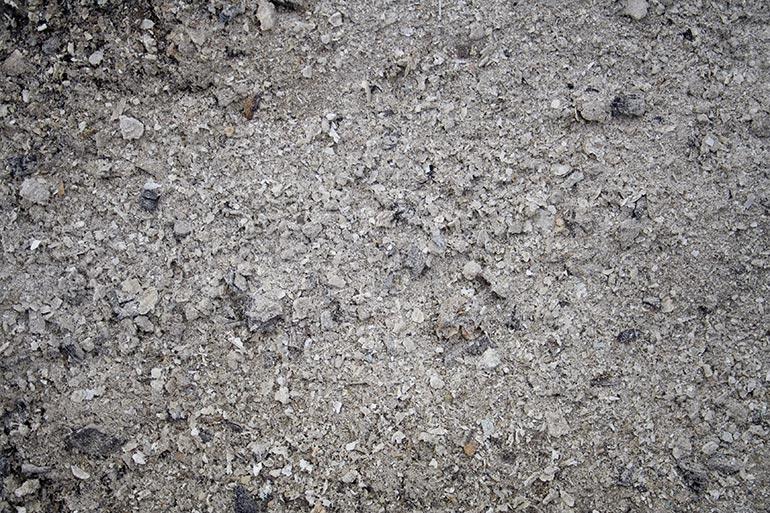 Ash, Wood, Premium Stock texture