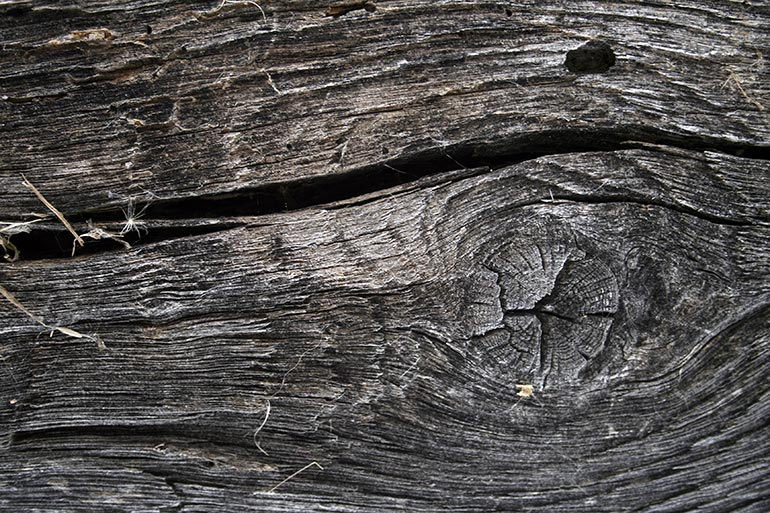 Old Premium Wood Stock Texture