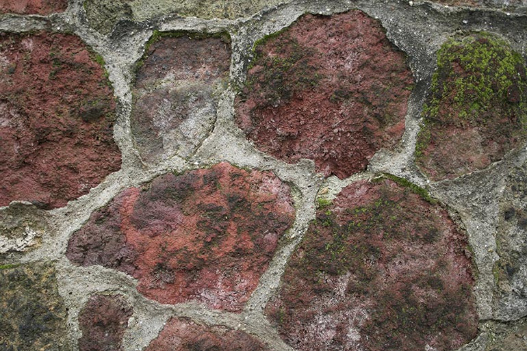 Brick Wall with moss, premium texture, free for work