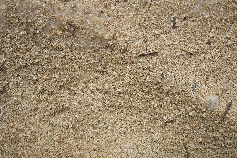 Sawdust texture – yellow