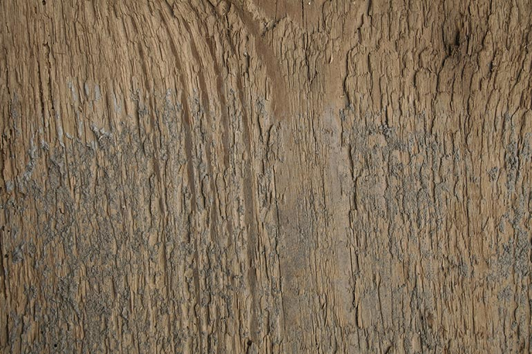 Lumber with some concrete – free texture