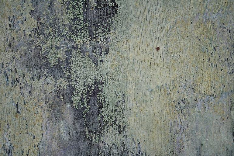 Metal, green old rusty metal free stock texture