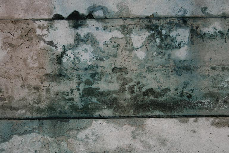 Dirty old wall stock texture, free for work