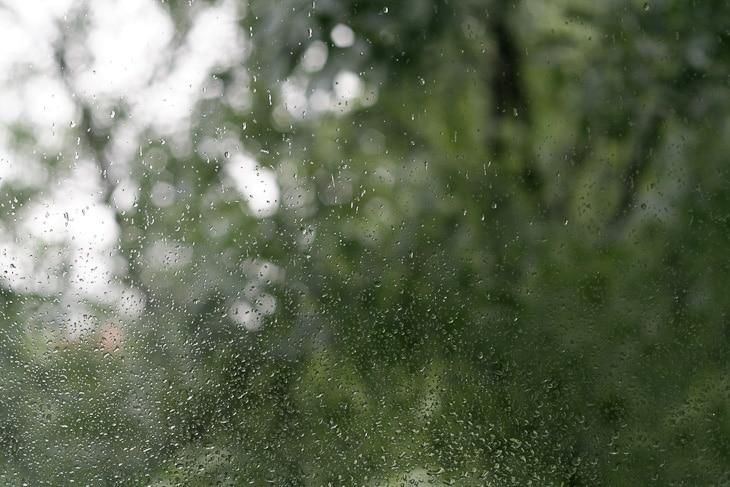 Wet_Summer_series_Vol_1-01-3