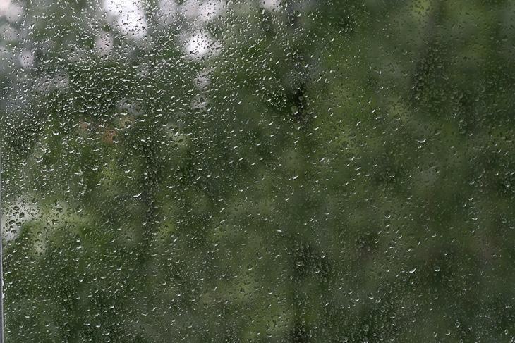 Wet_Summer_series_Vol_1-01-5