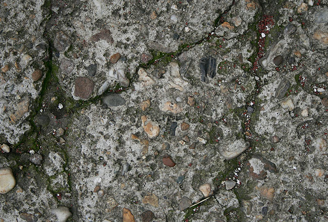Concrete texture with stones