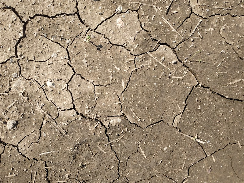 Cracked brown ground textures