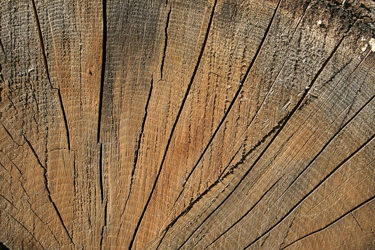 cracked-wood-texture-2