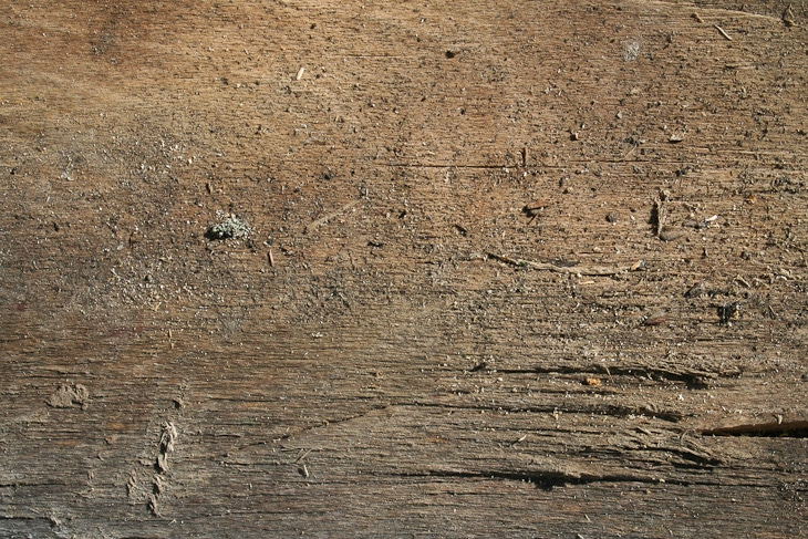 cracked-wood-texture-3