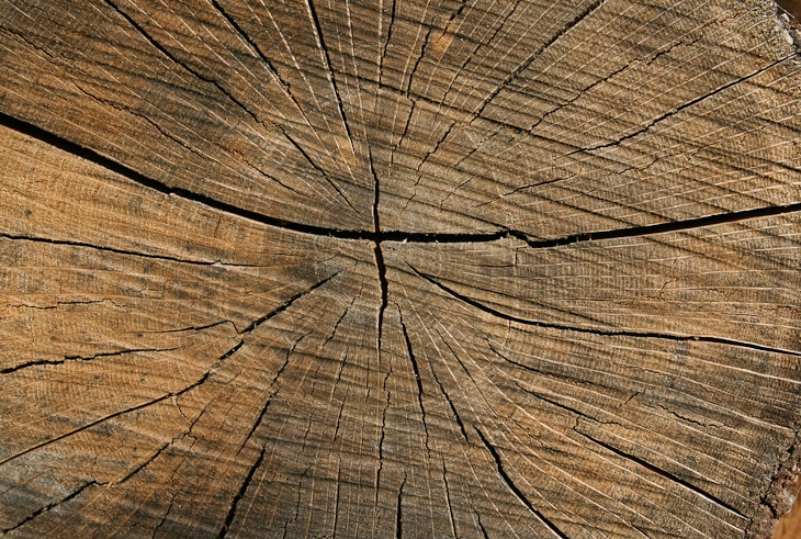 cracked-wood-texture-5