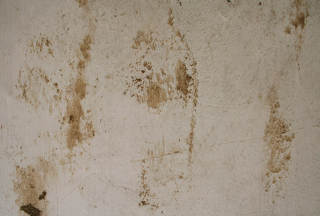 Dirty wall, free texture