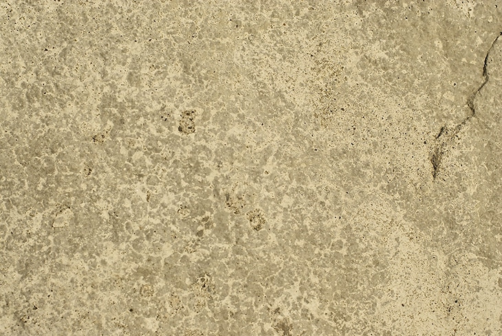 free-texture-by-nate-34