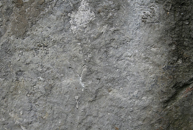 Grey concrete texture – free download