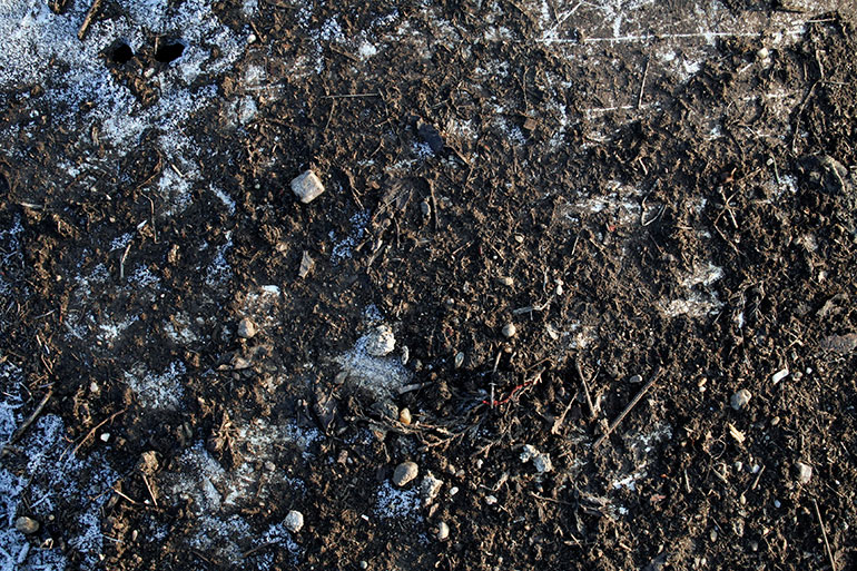 Frozen ground texture