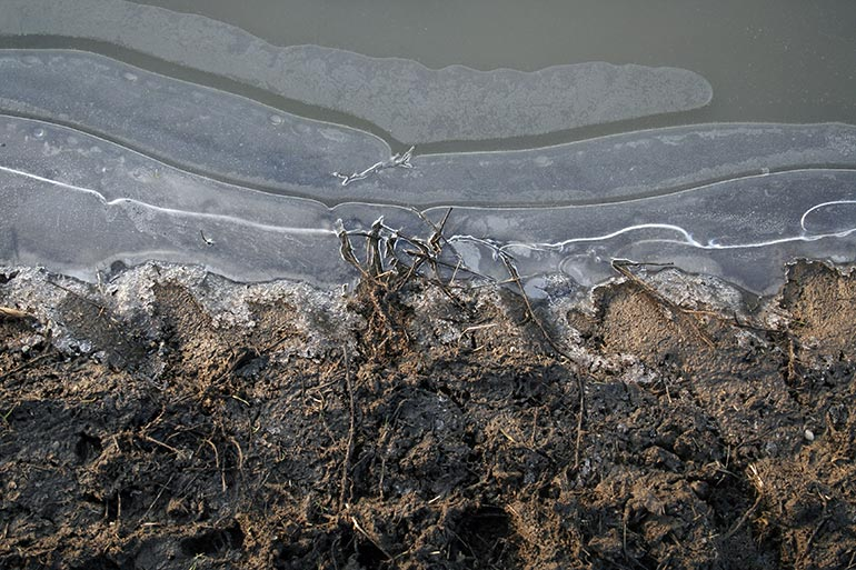 Ice texture with roots and ground