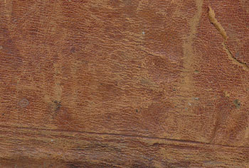Old leather texture, big size