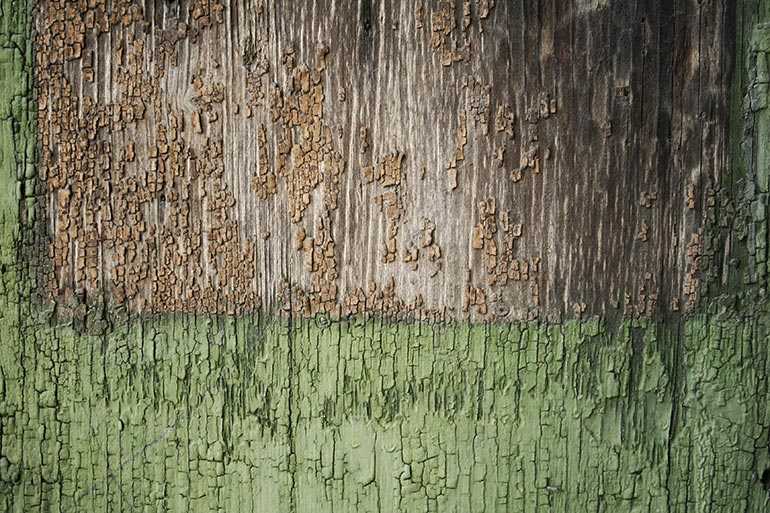 Brown with green paint wood texture