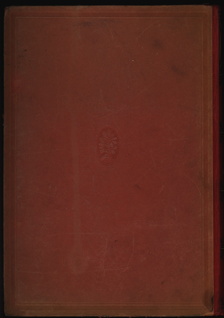 red-book-cover-texture-9
