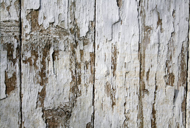 Download white wood fence texture