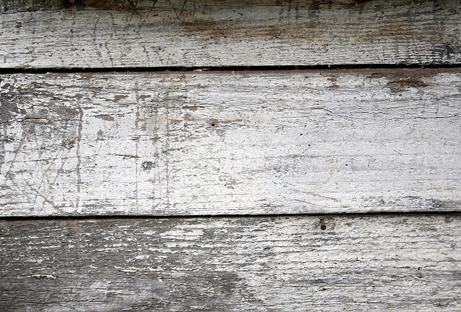 Planks old wood texture, with white color